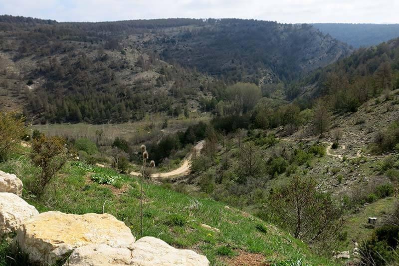 Comarca de la Sierra de Albarracín-