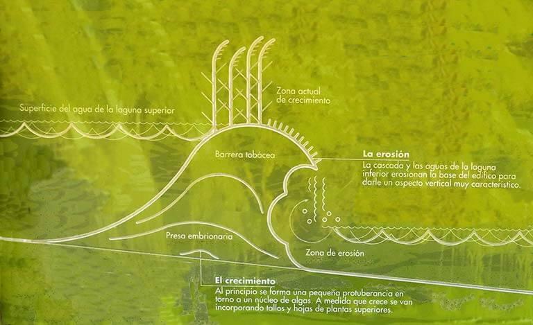 Lagunas de Ruidera Formacion de barreras