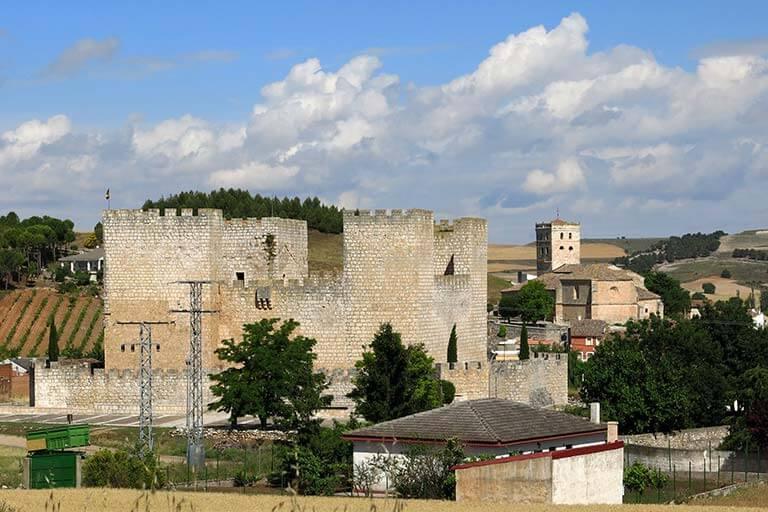 F06 Castillo de Encinas de Esgueva. Valladolid