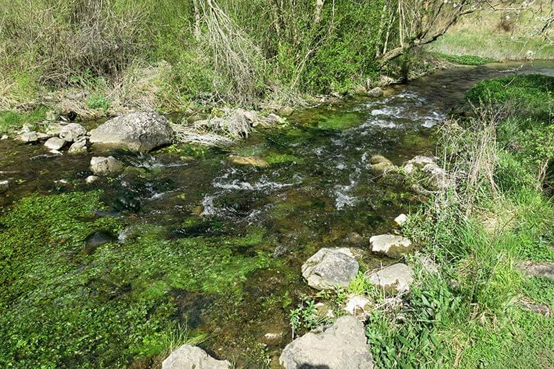 Ojos del rio Cabriel