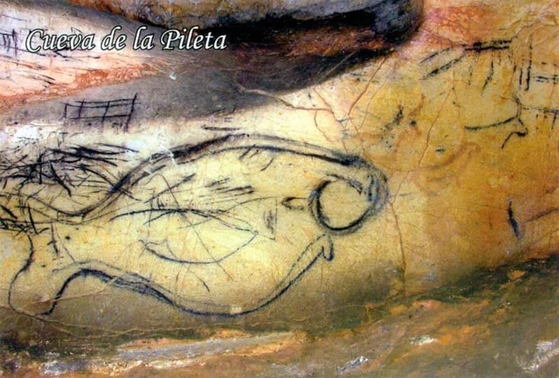Cueva de La Pileta: Pez del Paleolítico Superior
