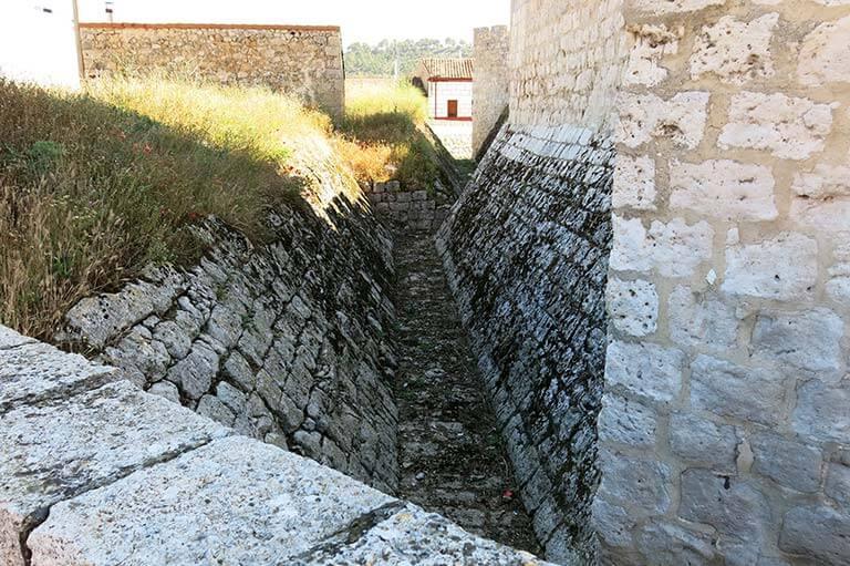 F41 Castillo de Encinas de Esgueva. Valladolid