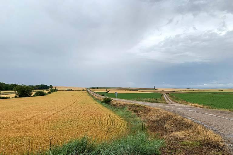 Tierra de Campos, Palencia