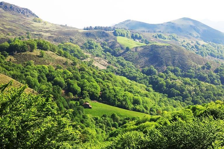 Pirineos navarros