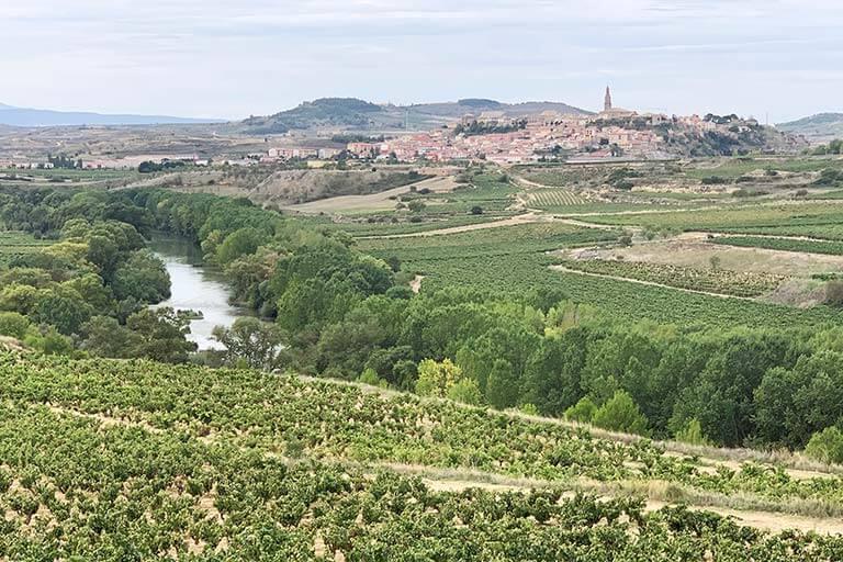 Valle del Ebro Biones