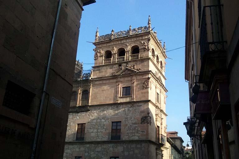 Salamanca, Palacio de Monterrey